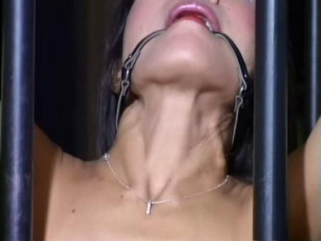 thai hedemora bondage kit