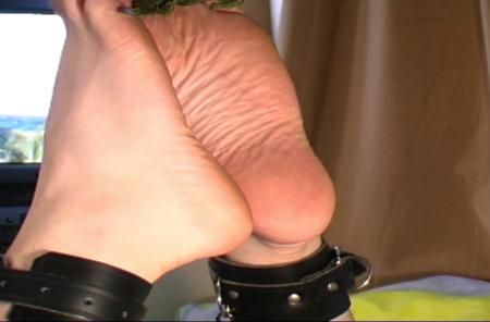 Fully fashioned nylon stocking fetish